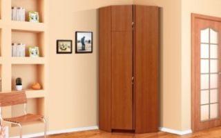 Угловой шкаф-пенал в гостиную