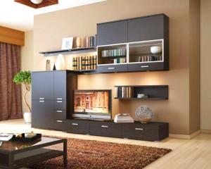 модульный шкаф в интерьере гостиной