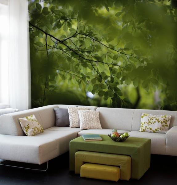 фотообои зеленого цвета в гостиной