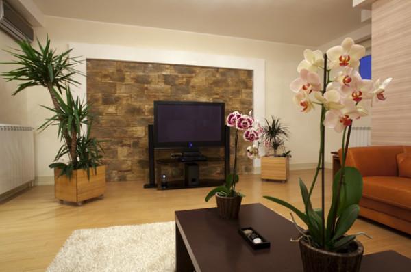 отделка стен в интерьере гостиной