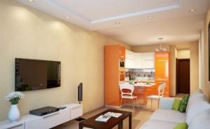 дизайн кухни-гостиной 17 кв м