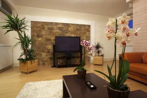 декор гостиной цветами