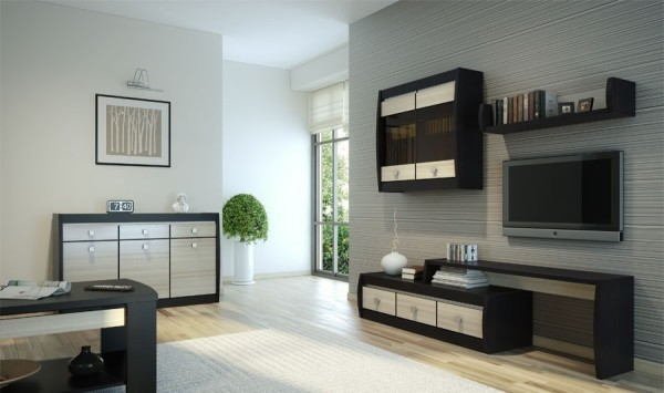 набор корпусной мебели в гостиной